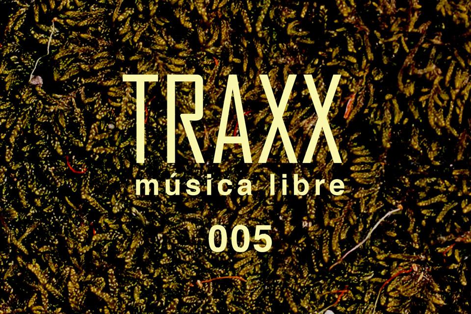 TRAXX 005 – texturas del house